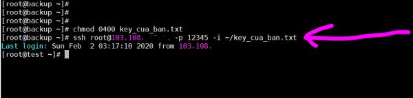 Đăng nhập remote host qua cổng tùy chỉnh và private key